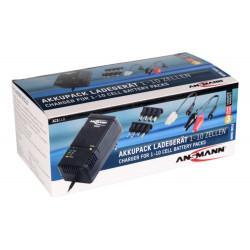 Автоматическое зарядное устройство Ansmann ACS110 1001-0023 для Ni-Mh Ni-Cd аккумуляторной сборки