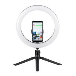 Светильник кольцевой для съемки видео 13012 Camelion KD-849 C02 LED светодиодный 26см на треноге