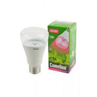 Светодиодная фитолампа BIO для комнатных растений Camelion LED 220В 10Вт Е27 арт.13241